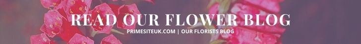 READ OUR FLORISTS BLOGS