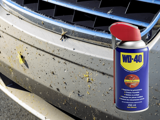 WD40 HACKS - BUGS, BUMBERS AND GRILLES
